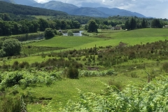 Achtergron Schotland